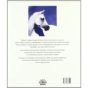La verdad sobre los caballos