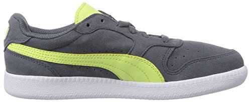 Puma Icra Trainer Sd, Football Entrainement Adulte Mixte Gris - Grau (turbulence-sharp green 10)
