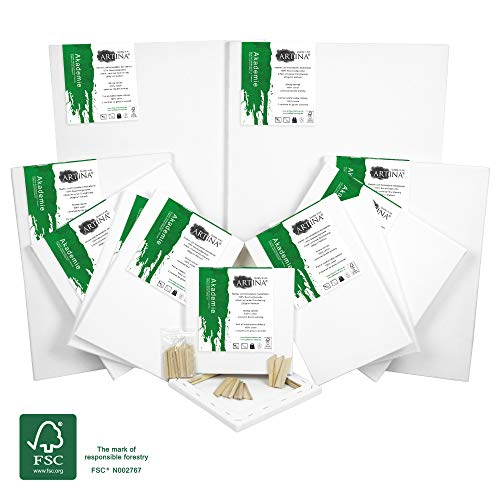 Artina Akademie FSC Set de 12 Lienzos con Bastidor - 30x40 cm, 20x20 cm, 20x30 cm, 40x60 cm - 100% Algodón 280g/m²
