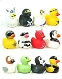 12 x lustige Badeente Quietscheente Ente Gummiente Duck 12 fach sortiert