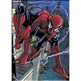 "SPIDERMAN Web, Officially Licensed Marvel Original Superhero Artwork, 2.5"" x 3.5"" Exceptional Quality MAGNET AIMANT"