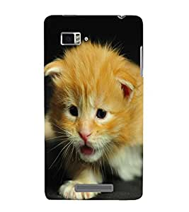 Takkloo black background ( cute cat, beize colour, soft feathers, bright eyes) Printed Designer Back Case Cover for Lenovo Vibe Z K910