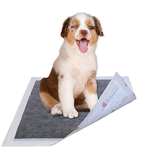 Youyababay Tappetini Igienici Assorbenti per Animali Domestici, Tappetini di Addestramento per Cuccioli,25pack(90 * 60cm)
