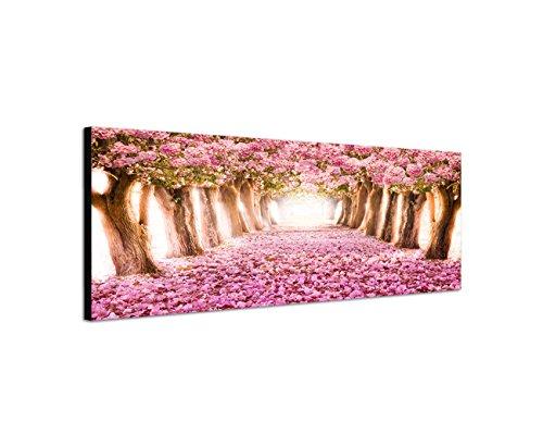 Keilrahmenbild Wandbild 150x50cm Allee Bäume Blüten Blütentunnel rosa