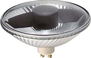 Lampe halogène scharnberger has. 13159 110 x 70 mm lampe halogène à réflecteur 4034451131590
