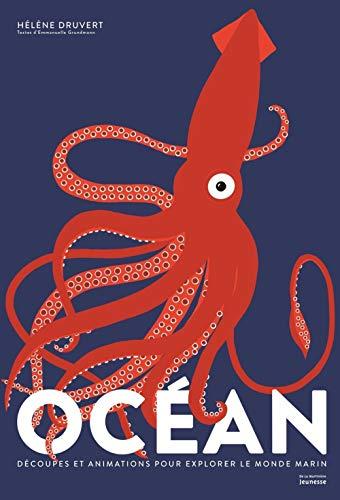 """<a href=""""/node/177496"""">Océan - Découpes et animations pour explorer le monde marin</a>"""