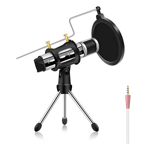 ikrofon, Plug & Play Mini Mikrofon mit Starkes Echo Aufnahme Karaoke Singen Rundfunk& Podcasting Mikrofon für iPhone, ASMR, YouTube, Skype, Voice-Over, Spiele, Smule, usw (Silber) ()