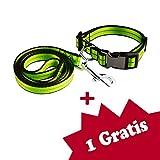 Tamia Living 2er verstellbares Hundehalsband + Hundeleine Set Halsband Leine Nylon mit Klickverschluss (G1009 grün)