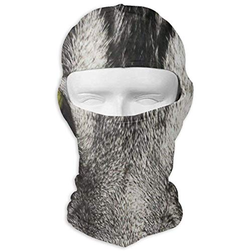 Balaclava Personalized Text Icon Full Face Masks UV Protection Ski Sports Cap Motorcycle Neck Warmer Men Fashion5