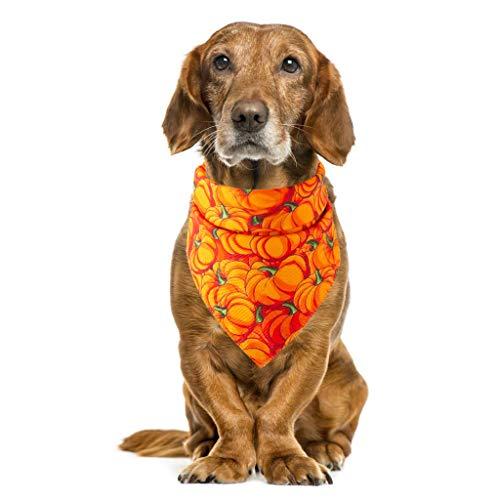 Hundehalstuch Halstuch für Hunde mit Bestickt Haustier Schalkragen Schal Hund, Katze Speichel Handtuch Halloween mit Kostüm Welpen Dekor Hüte für kleine Katze Hund -