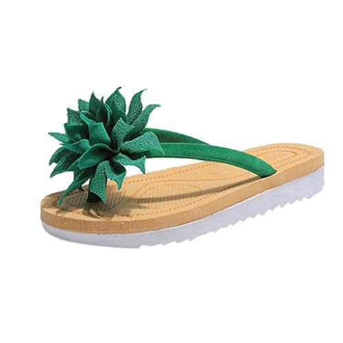 ❤AG&T❤ Frauen Hausschuhe Sommer, Sommer Mode Elegante Frauen Blumendekoration Slip-On Flip Flops Flache Hausschuhe Einfarbig College Beach Hausschuhe - Lebensdauer Dvd-filmen Von