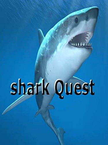 shark-quests-ov