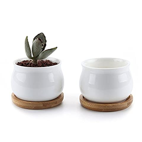 T4U 7CM Ceramic White Jar Shape Design Sucuulent Plant Pot/Cactus Plant Pot Flower Pot with bamboo tray/Container/Planter White Package 1 Pack of 2