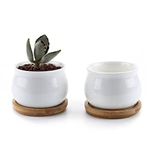 t4u 7cm keramik sukkulenten t pfe kaktus pflanze t pfe mini blument pfe mit bambusuntersetzer. Black Bedroom Furniture Sets. Home Design Ideas