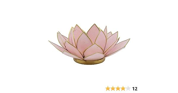 Lotus Capiz Kerzenhalter Windlicht verschiedene Farben wählbar