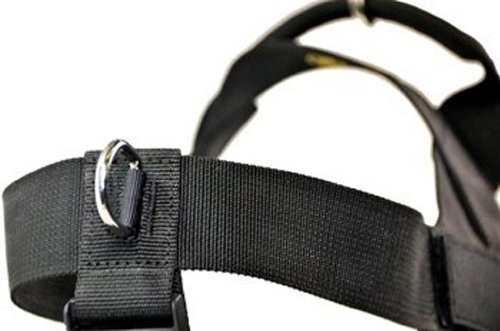 DT-Universal-No-Pull-Dog-Harness-with-Adjustable-Straps-Black-Small-Fits-Girth-Size-60cm-to-70cm