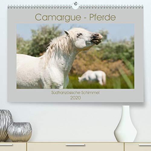 Camargue-Pferde - Südfranzösische Schimmel(Premium, hochwertiger DIN A2 Wandkalender 2020, Kunstdruck in Hochglanz): Fotografien der berühmten weißen ... (Monatskalender, 14 Seiten ) (CALVENDO Tiere) -