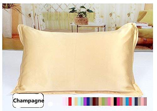 Wenquan-bed, One Side 100% Maulbeerseide Kissenbezüge Umschlag Reine Seide Kissenbezug Kissenbezug for gesunden Schlaf Multicolor Ohne Kissen (Color : Champagne, Size : 51x66cm) -