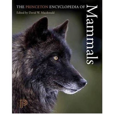 [ THE PRINCETON ENCYCLOPEDIA OF MAMMALS ] By Macdonald, David W ( Author ) Mar- 2009 [ Paperback ]