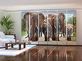 Wellmira Fotogardine, Flächenvorhang, Fotodruck, Schiebevorhang, Bedruckte Schiebegardinen, Gardine mit Motiv, auf Maß (6 x 275x60)