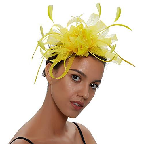 Zivyes Fascinators Stirnband für Frauen Hochzeit Tea Party Stirnband Kostüm Zubehör Blume Mesh Federn Haarspange ()