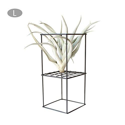 Brightcactus Blumenständer - rustikaler Stil Freistehendes Eisen Doppelschicht Metall Anhänger Geometrische quadratische Luftpflanze Receptacle Blumenständer (L, Schwarz)