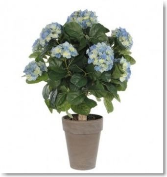 Kunstpflanze  Pflanzgefäß Farbe