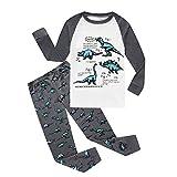 Fenverk 2 Stück Baby Boys'Oder Girls 'Graphic Langarm Hosen Kleidung Set Jungen Oder MäDchen Graphic Animal Dinosaurier Print(Weiß 2,3T)