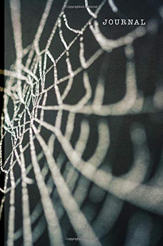 Journal: Halloween Spider Web | 128 College Ruled Pages: 6 x 9 in Blank Lined Journal with Soft Matte Cover | Notebook, Diary, Composition Notebook ... school, students, homeschool and ()