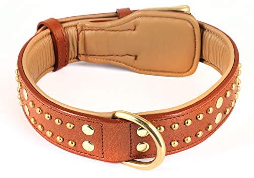 Monkimau Leder-Halsband braun gepolstert Hund Hunde-Halsband mit Nieten für Kleine und Grosse (L 45-53 cm)