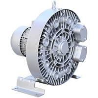 Gowe 1.1 KW a pressione Premium Big Side Channel soffiatore soffiatore soffiatore trifase | Elegante Nello Stile  | Nuova voce  | Design ricco  0deed8
