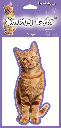Cat lovers Gift-Ginger Cat deodoranti x 4pz. Ciascuna profumatore confezionati singolarmente-ideale per auto, casa o (Kitty Bowl)