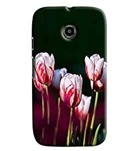 Blue Throat White Lily Pattern Hard Plastic Printed Back Cover/Case For Moto E2