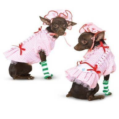 Rubie's Country Pup Strawberry Shortcake Hund Kostüm, XS, Rose