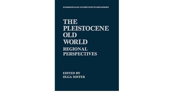 The Pleistocene Old World: Regional Perspectives
