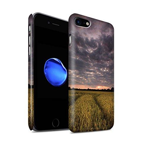 STUFF4 Matte Snap-On Hülle / Case für Apple iPhone 8 / Glockenblume Muster / Englische Gärten Kollektion Sonnenuntergang