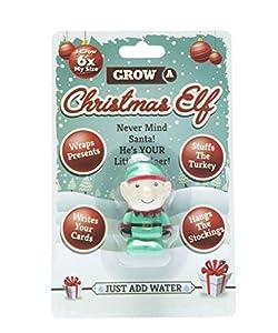 Boxer Gifts BB5222 - Juguete mágico de Elfo navideño para niños, diseño con Texto en inglés Grow a Magical Christmas Elf, Color Verde