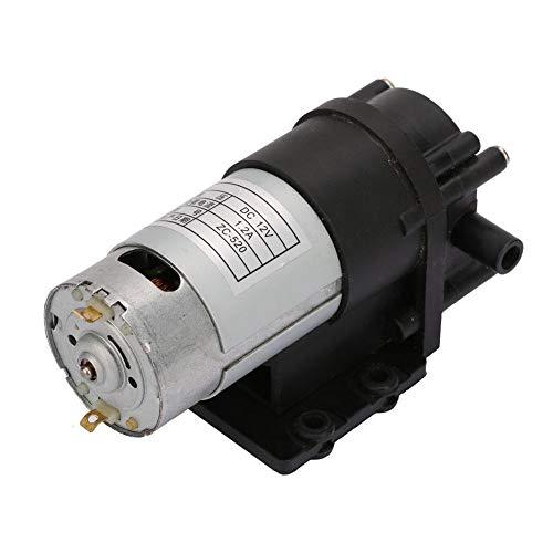 Wasserpumpe Korrosionsgeschütztes Getriebe, ZC-520 DC 12V Heißwasserpumpe Korrosionsgeschütztes Getriebe Selbstansaugende Pumpe