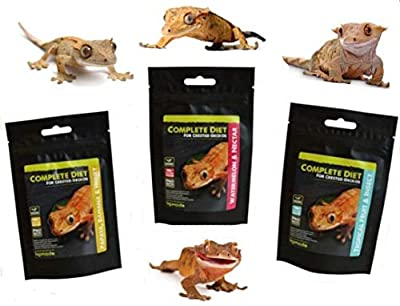 Komo-do Complete Crested Gecko Diet 60g (2.11oz) Similar to Pangea - Probiotic by Happy-Pet