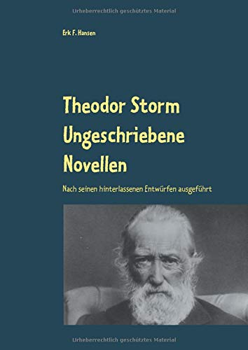 Theodor Storm Ungeschriebene Novellen: Nach seinen hinterlassenen Entwürfen ausgeführt Erk 19