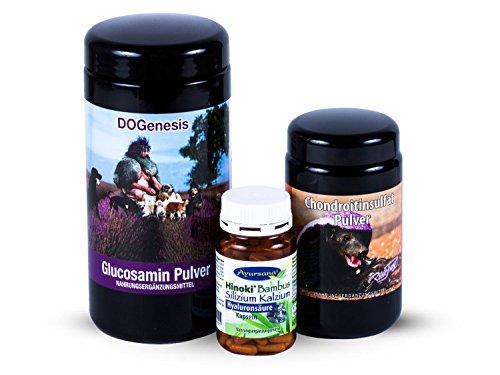 Robert Franz - Glucosamin-Pulver (500 g) und Chondroitinsulfat-Pulver (250 g) im SPARPACK mit Bambus Silizium Kalzium + Hyaluronsäure Kapseln (120 Stk.) von Ayursana