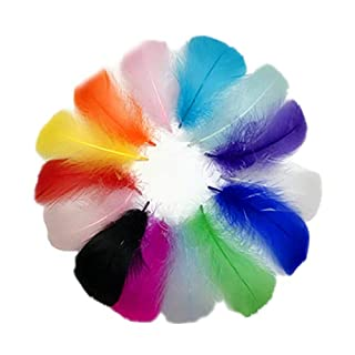 Sobotoo 300Pcs Assorted Coloured Feathers Crafts Feathers for DIY Craft Home Wedding Decorations 8-12 cm