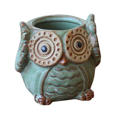 Monllack Vaso da Fiori a Forma di Gufo di Cartone Animato per Piante succulente in Ceramica Mini Mini Home Office Giardino Carnoso...