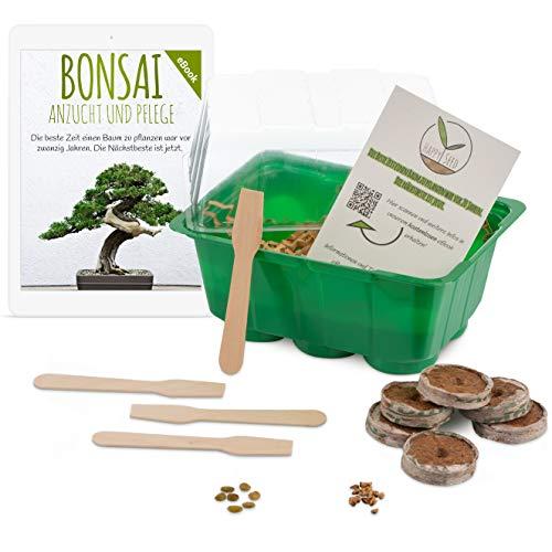 Bonsai Starter Kit Anzuchtset inkl. GRATIS eBook – Pflanzset aus Mini-Gewächshaus, Samen & Erde – nachhaltige Geschenkidee für Pflanzenfreunde
