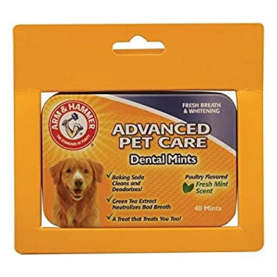Company of Animals Arm & Hammer Advanced Care Tartar Control Dental Mints - Beef Flavoured, 40 Mints by The Company of Animals