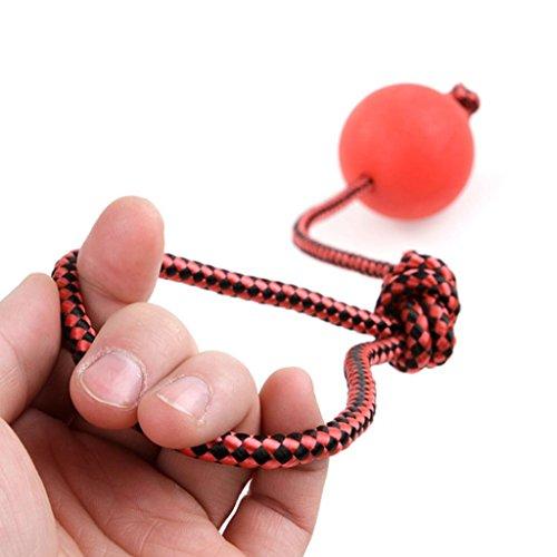 ALCYONEUS Gummi Hund kauen Training Ball Welpe Pet Spiel Toy mit Seil Griff size S