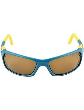Julbo Bivouak Cameleon SGL - Gafas de esquí, color Multicolor, talla  única