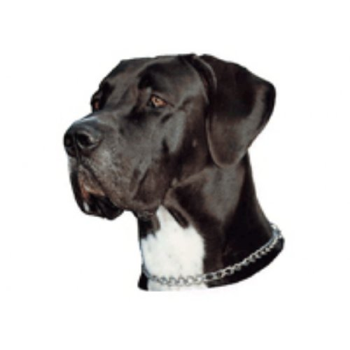 Preisvergleich Produktbild World Stickers Schwandt Heimtierbedarf 13191 Aufkleber 2 Stück ca. 140 x 160 mm für Warnschild Deutsche Dogge schwarz & weiss