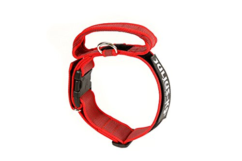 Julius-K9 - Collar para perro, Rojo (Red/Gray), 50 mm*49-70 cm