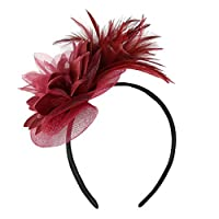 Aiserkly 1920s Feather Fascinators for Womens Wedding Flower Cocktail Tea Party Headwear Headband Hairpin Wine